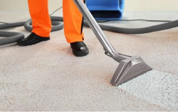 How to Determine If You Need Professional Carpet Steam Cleaning?