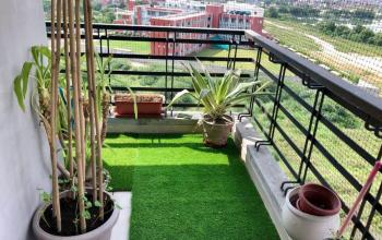 How Do You Decorate A Balcony Garden?
