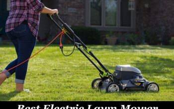 Best Electric Lawn Mower to Buy Online