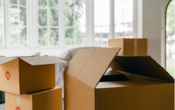 5 reasons to hire pro-european removals