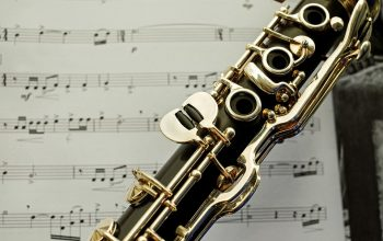 What will I learn in a clarinet lesson?