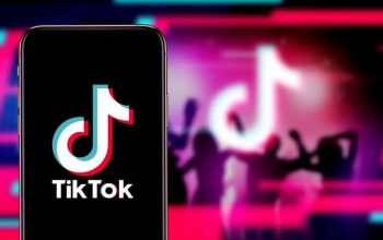 How To Get More TikTok Likes Organically And By Using InstBlast